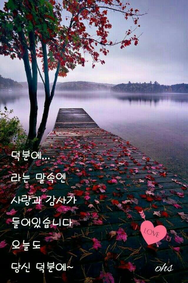 b_6e8Ud018svc1o372x6ckwuef_s953du.jpg