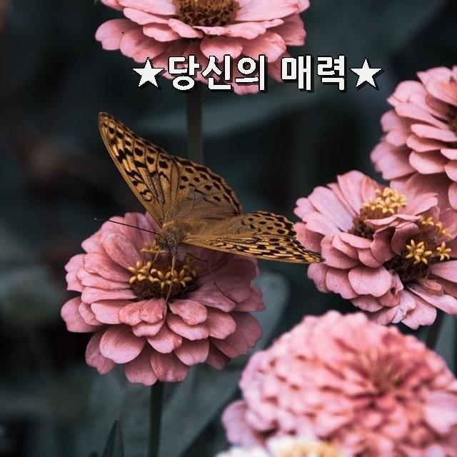 4_jd6Ud018svcaey325c41tbo_tjk5q5.jpg