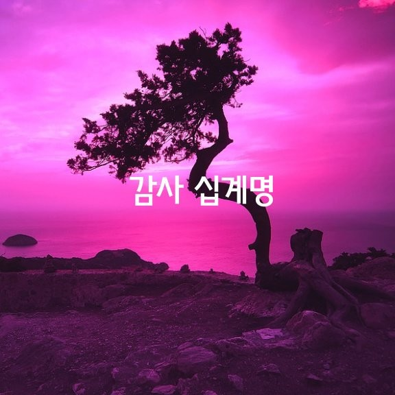 [감사 십계명]  01. 생각이 곧 감사다. 생각(th