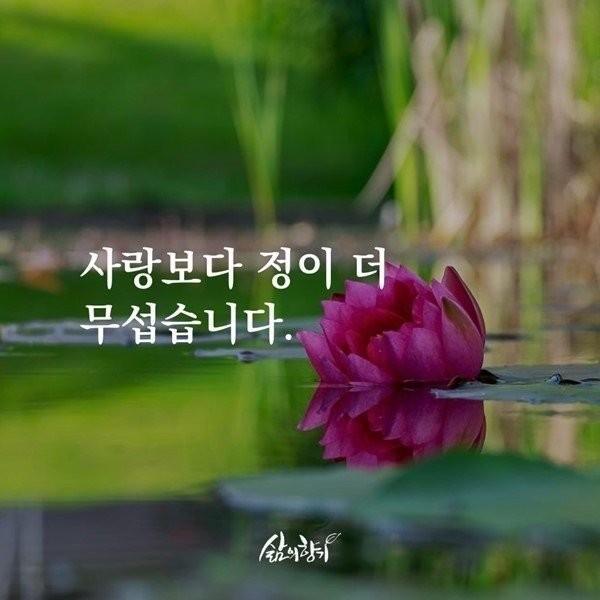 천운, 지운, 인운  사람에게는 세가지 의 운( )이